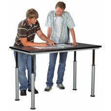 Shain Adaptable Table (ADA)